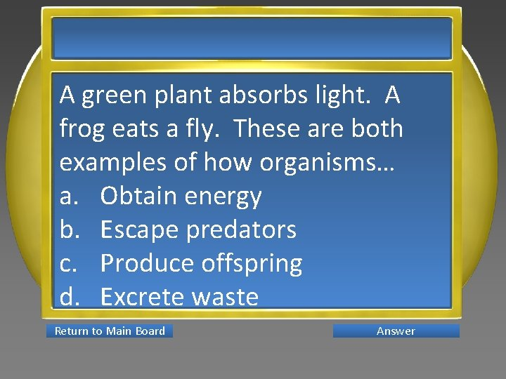 A green plant absorbs light. A frog eats a fly. These are both examples