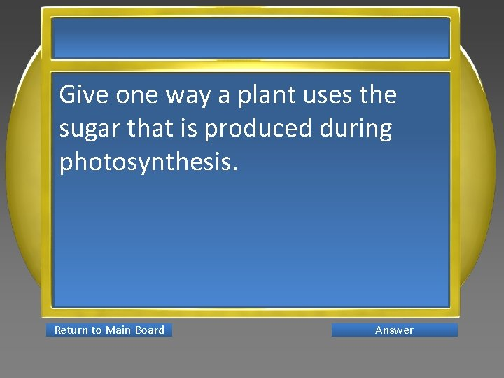 Give one way a plant uses the sugar that is produced during photosynthesis. Return