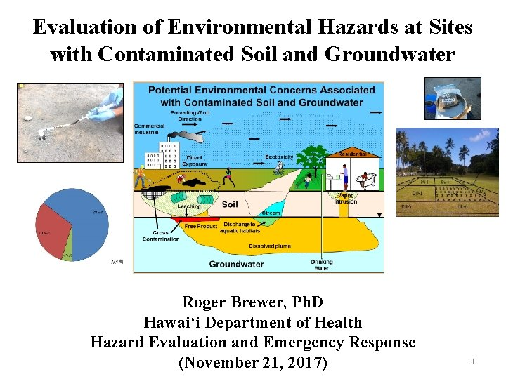 Evaluation of Environmental Hazards at Sites with Contaminated Soil and Groundwater Roger Brewer, Ph.