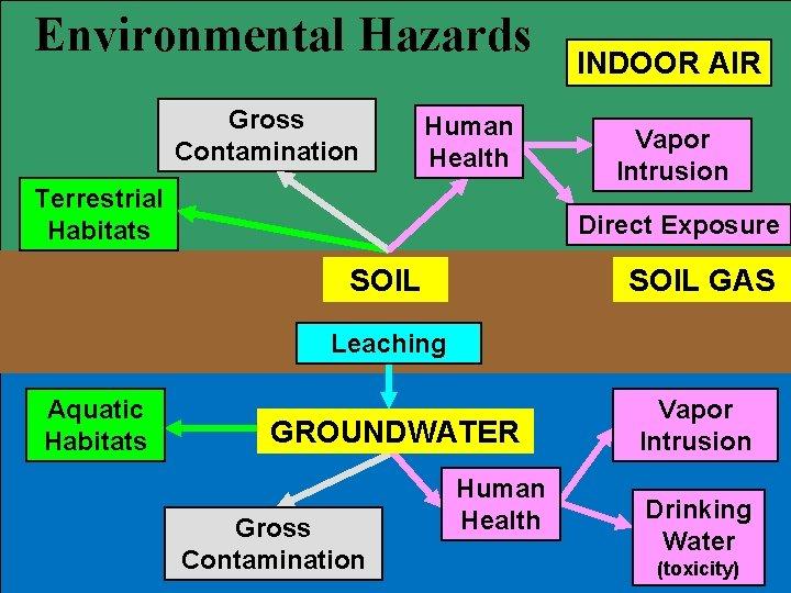 Environmental Hazards Gross Contamination Human Health Terrestrial Habitats INDOOR AIR Vapor Intrusion Direct Exposure
