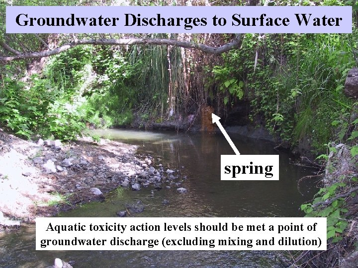 Groundwater Discharges to Surface Water spring Aquatic toxicity action levels should be met a