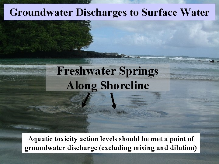 Groundwater Discharges to Surface Water Freshwater Springs Along Shoreline Aquatic toxicity action levels should