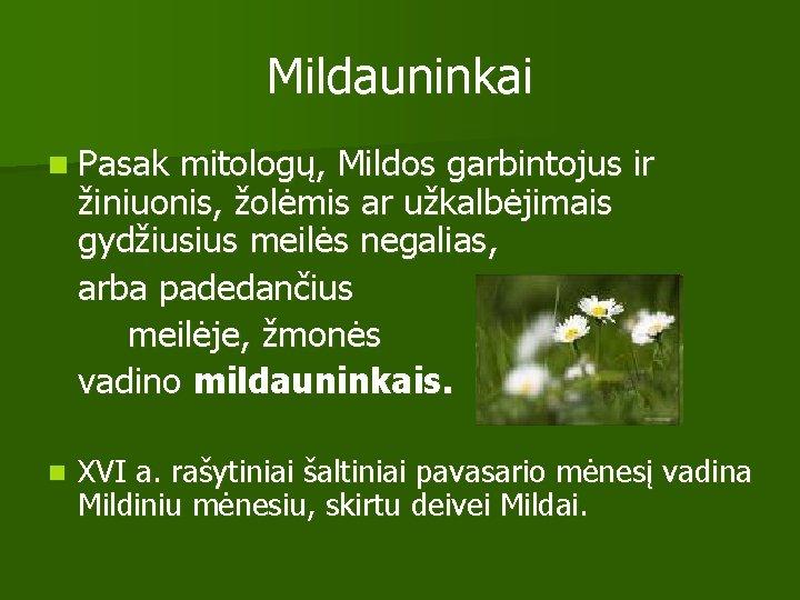 Mildauninkai n Pasak mitologų, Mildos garbintojus ir žiniuonis, žolėmis ar užkalbėjimais gydžiusius meilės negalias,