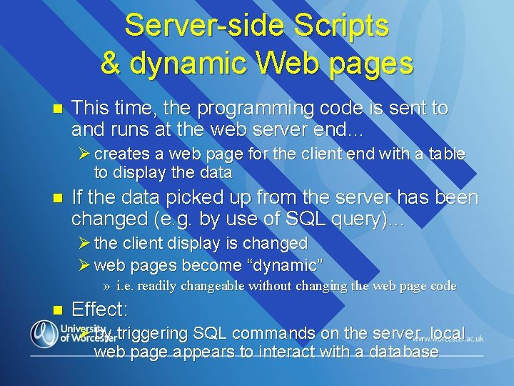Server-side Scripts & dynamic Web pages n This time, the programming code is sent