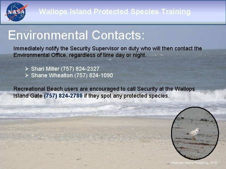 Wallops Island Protected Species Training Environmental Contacts: Immediately notify the Security Supervisor on duty
