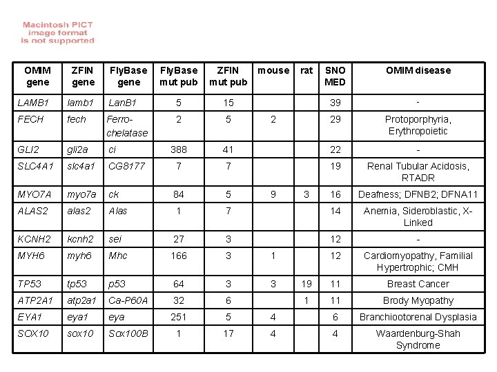OMIM gene ZFIN gene LAMB 1 lamb 1 FECH Fly. Base gene Fly. Base
