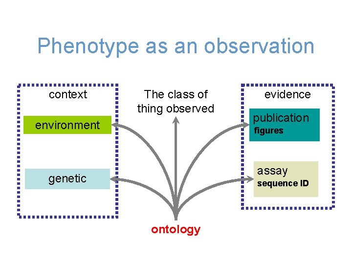 Phenotype as an observation context The class of thing observed environment evidence publication figures