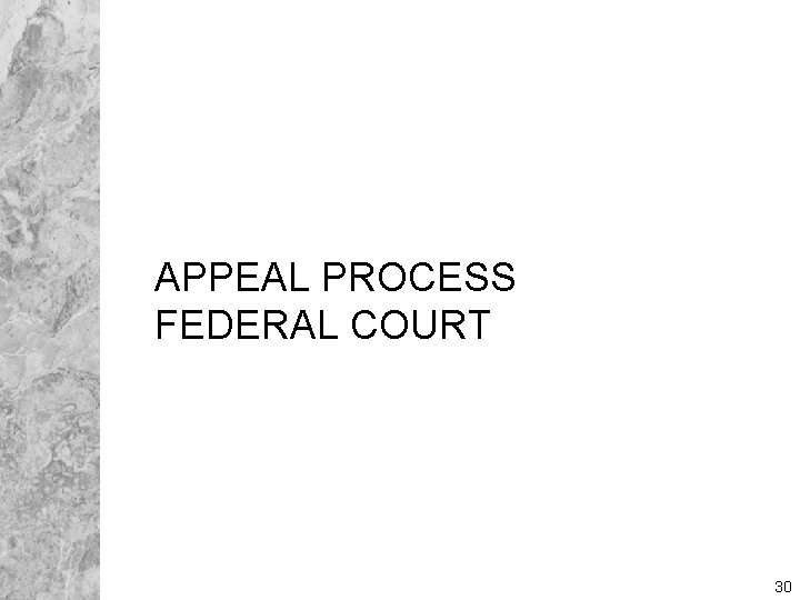 APPEAL PROCESS FEDERAL COURT 30