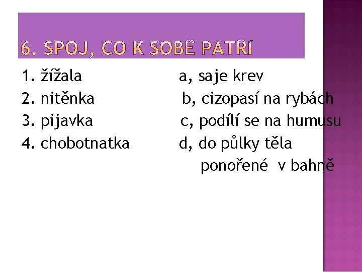1. 2. 3. 4. žížala nitěnka pijavka chobotnatka a, saje krev b, cizopasí na