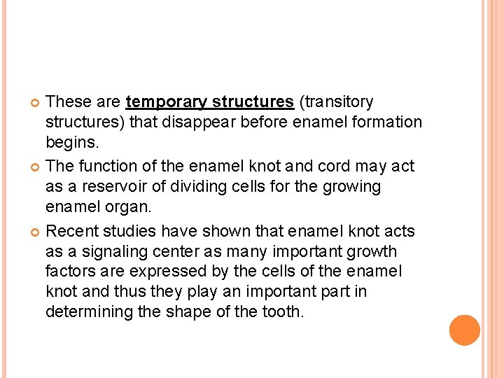 These are temporary structures (transitory structures) that disappear before enamel formation begins. The function