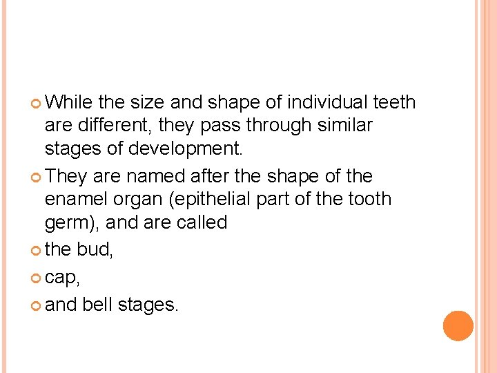 While the size and shape of individual teeth are different, they pass through