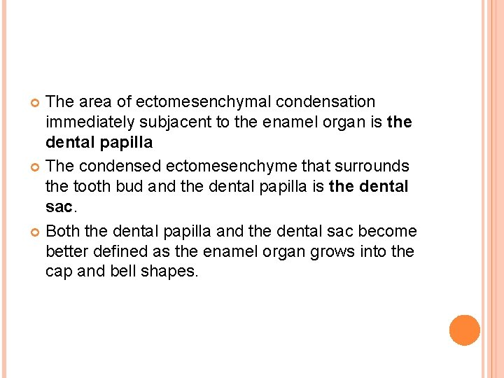 The area of ectomesenchymal condensation immediately subjacent to the enamel organ is the dental