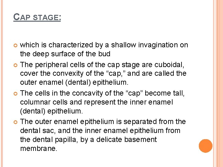 CAP STAGE: which is characterized by a shallow invagination on the deep surface of