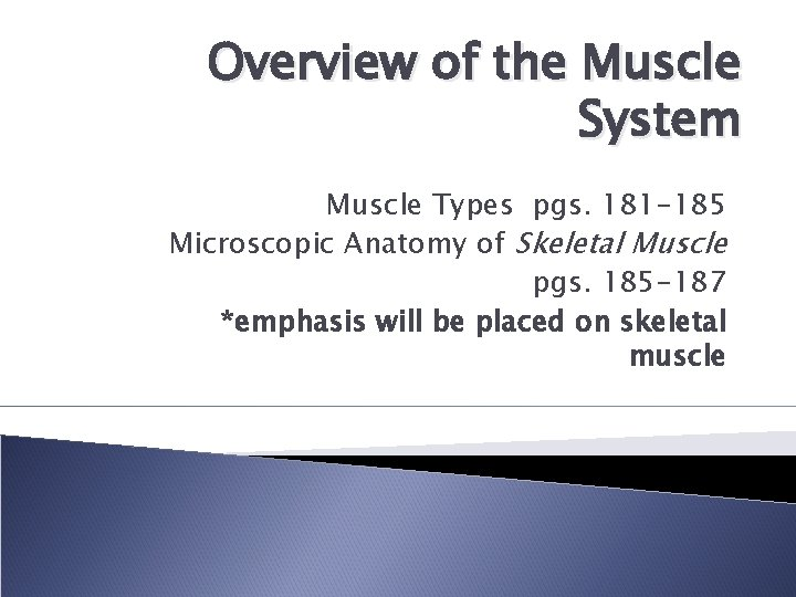 Overview of the Muscle System Muscle Types pgs. 181 -185 Microscopic Anatomy of Skeletal