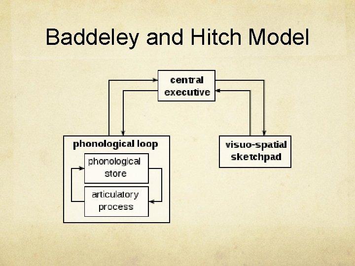 Baddeley and Hitch Model
