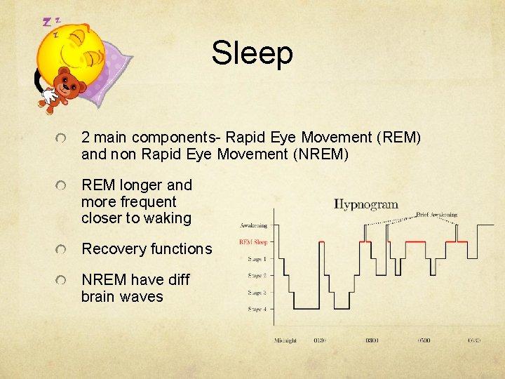 Sleep 2 main components- Rapid Eye Movement (REM) and non Rapid Eye Movement (NREM)