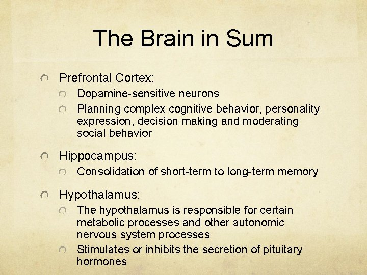 The Brain in Sum Prefrontal Cortex: Dopamine-sensitive neurons Planning complex cognitive behavior, personality expression,