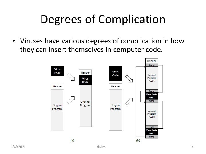 Degrees of Complication • Viruses have various degrees of complication in how they can