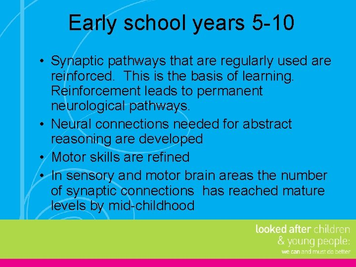Early school years 5 -10 • Synaptic pathways that are regularly used are reinforced.