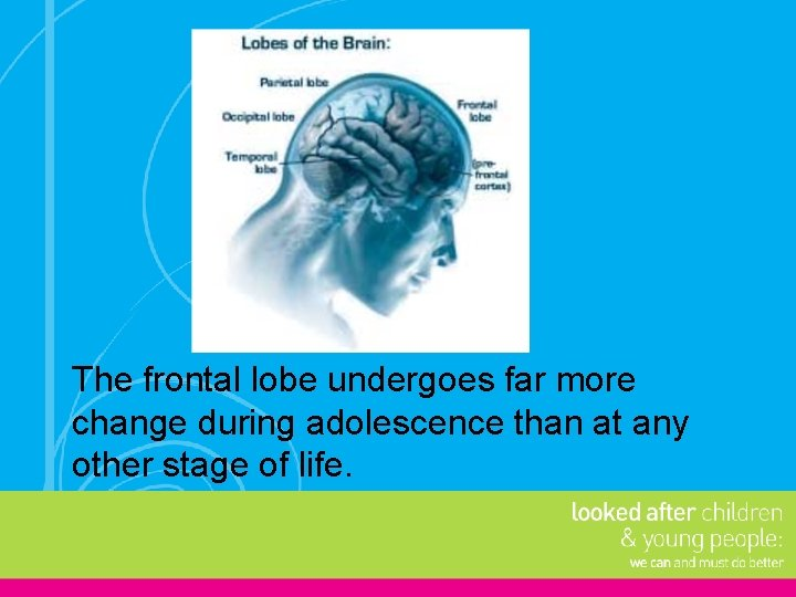 The frontal lobe undergoes far more change during adolescence than at any other stage