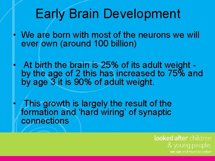 Early Brain Development • We are born with most of the neurons we will