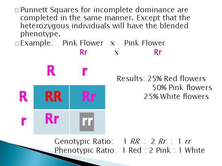 � Punnett Squares for incomplete dominance are completed in the same manner. Except that