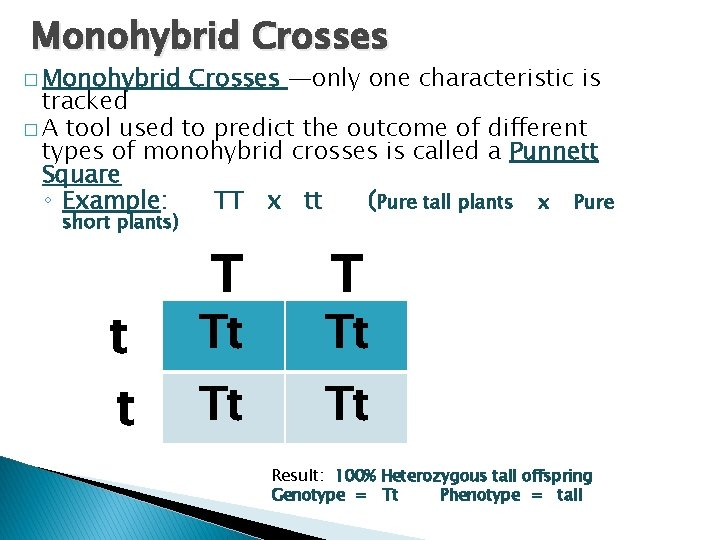 Monohybrid Crosses � Monohybrid Crosses —only one characteristic is tracked � A tool used