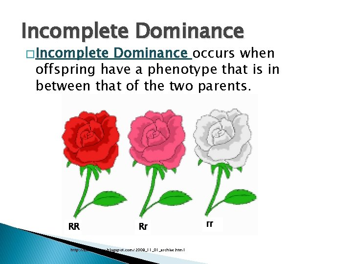 Incomplete Dominance � Incomplete Dominance occurs when offspring have a phenotype that is in