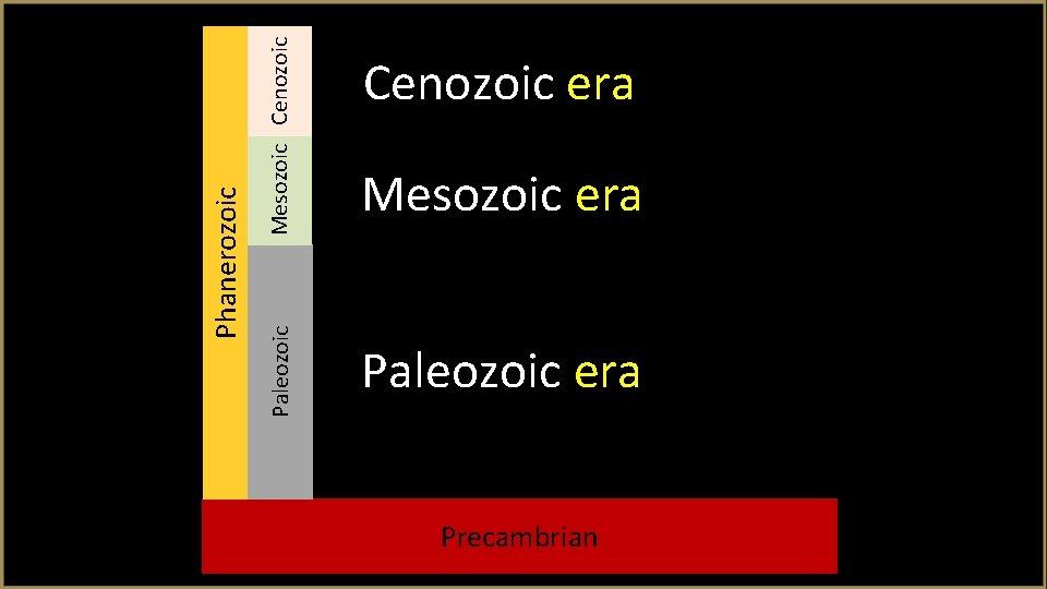 Mesozoic Cenozoic Paleozoic Phanerozoic Cenozoic era Mesozoic era Paleozoic era Precambrian