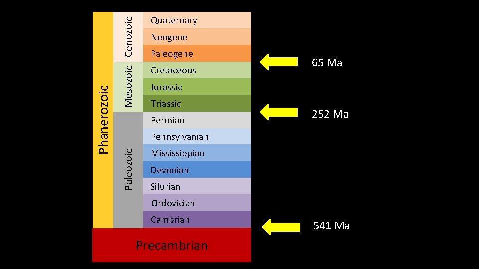 Mesozoic Cenozoic Neogene Paleogene Cretaceous 65 Ma Jurassic Triassic Permian 252 Ma Pennsylvanian Paleozoic