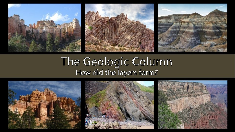 The Geologic Column How did the layers form?