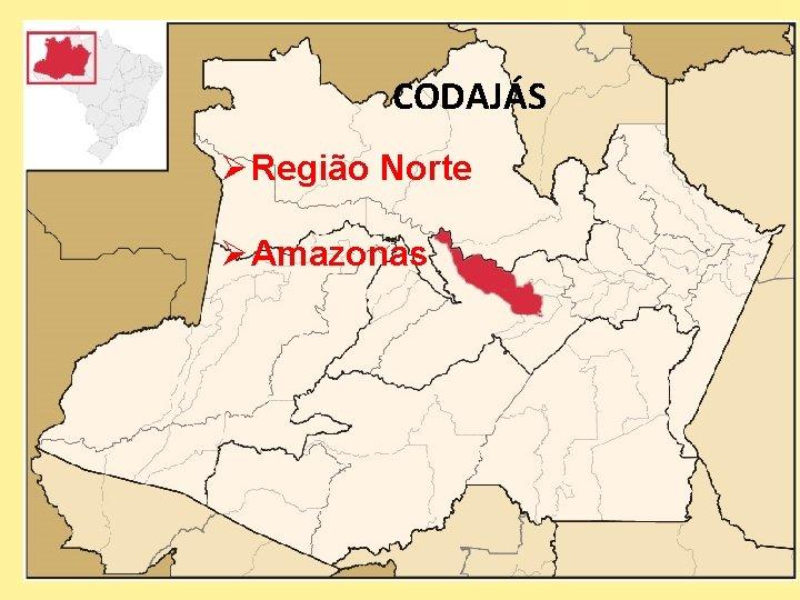 CODAJÁS Ø Região Norte Ø Amazonas