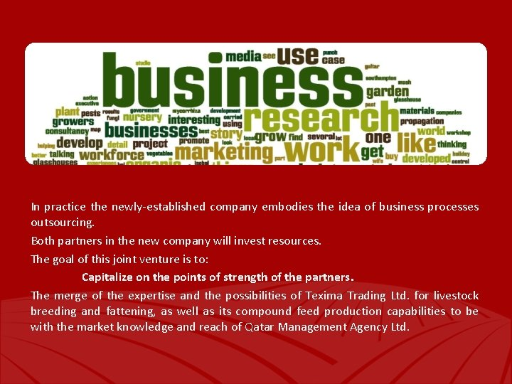 In practice the newly-established company embodies the idea of business processes outsourcing. Both partners