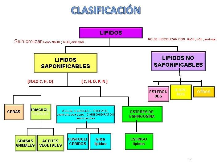 CLASIFICACIÓN LIPIDOS NO SE HIDROLIZAN CON Na. OH, KOH , enzimas. . Se hidrolizann