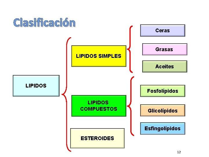 Clasificación Ceras Grasas LIPIDOS SIMPLES Aceites LIPIDOS Fosfolípidos LIPIDOS COMPUESTOS Glicolípidos Esfingolípidos ESTEROIDES 12