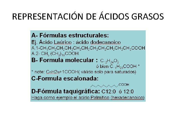 REPRESENTACIÓN DE ÁCIDOS GRASOS