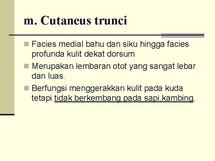 m. Cutaneus trunci n Facies medial bahu dan siku hingga facies profunda kulit dekat
