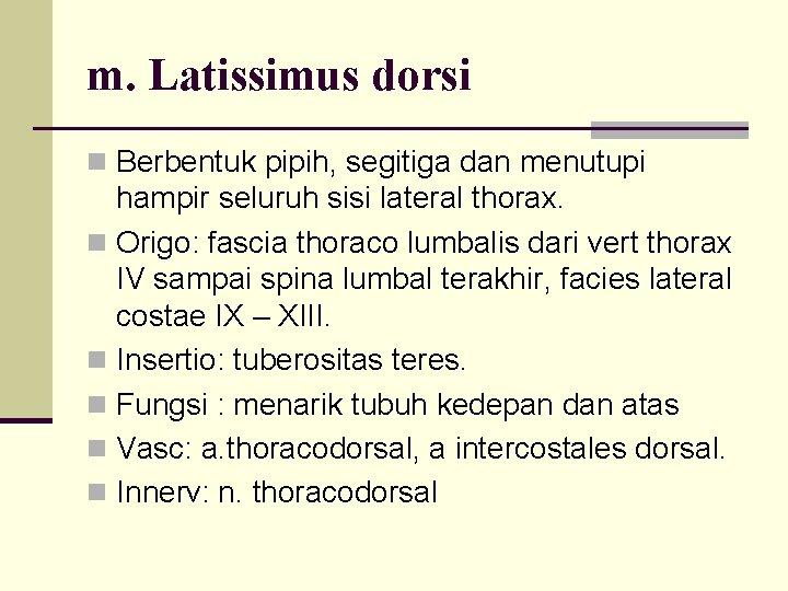 m. Latissimus dorsi n Berbentuk pipih, segitiga dan menutupi hampir seluruh sisi lateral thorax.