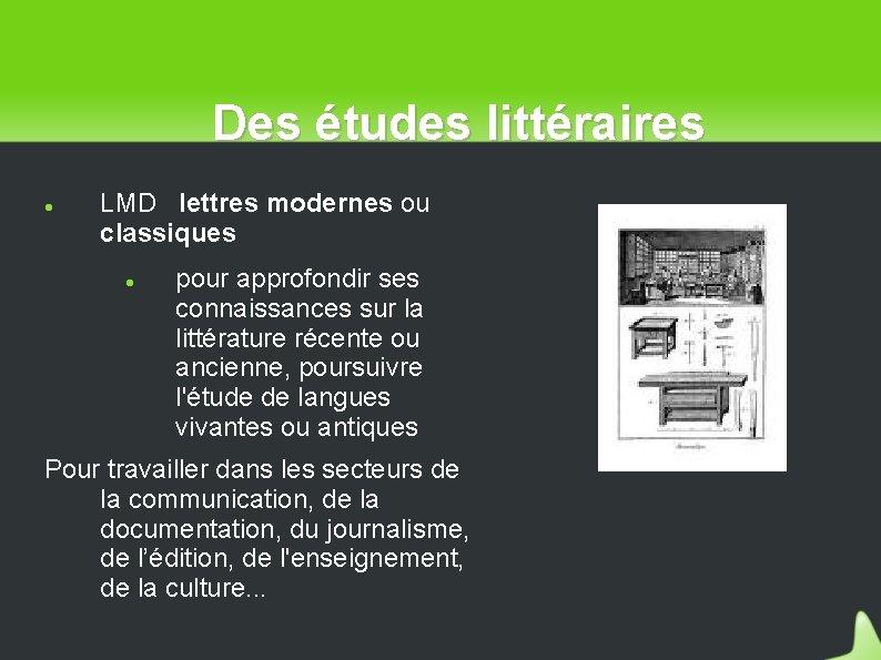 Des études littéraires LMD lettres modernes ou classiques pour approfondir ses connaissances sur la