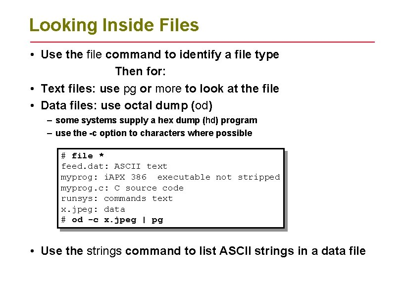 Looking Inside Files • Use the file command to identify a file type Then