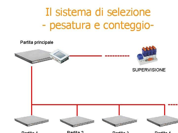 Il sistema di selezione - pesatura e conteggio. Partita principale SUPERVISIONE