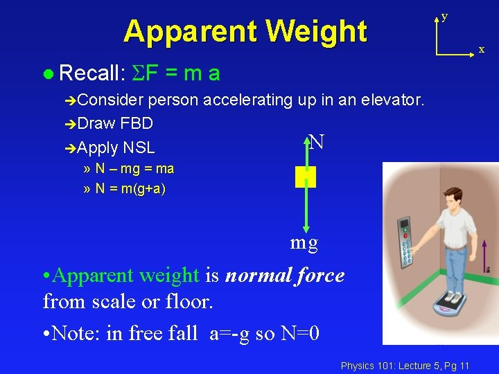 Apparent Weight y l Recall: SF = m a èConsider person accelerating up in