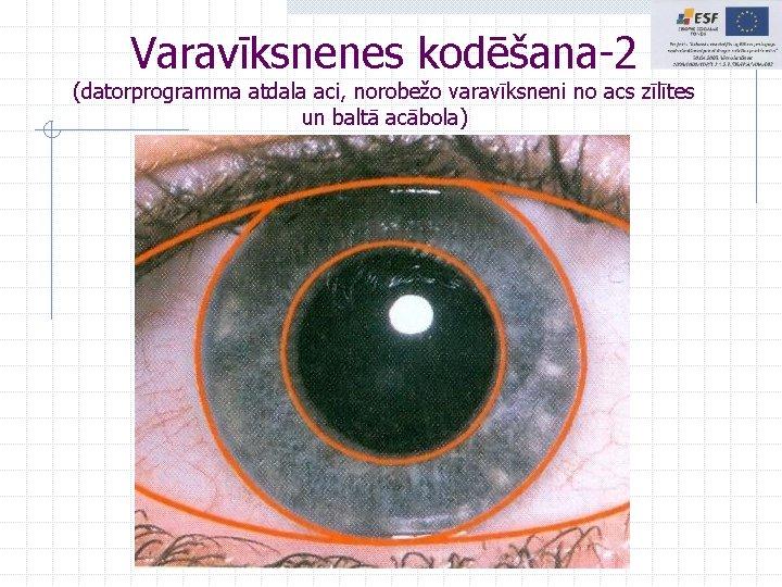 Varavīksnenes kodēšana-2 (datorprogramma atdala aci, norobežo varavīksneni no acs zīlītes un baltā acābola)