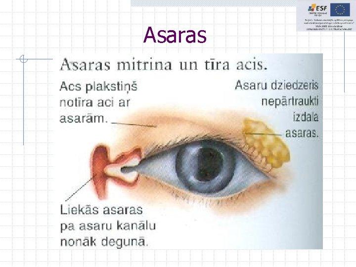 Asaras