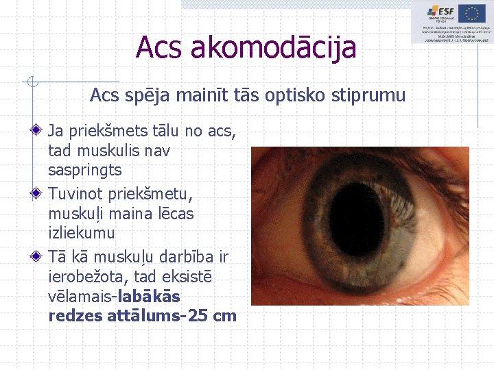 Acs akomodācija Acs spēja mainīt tās optisko stiprumu Ja priekšmets tālu no acs, tad