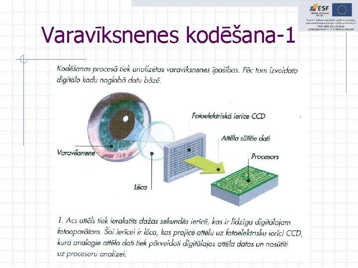 Varavīksnenes kodēšana-1