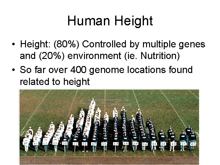 Human Height • Height: (80%) Controlled by multiple genes and (20%) environment (ie. Nutrition)