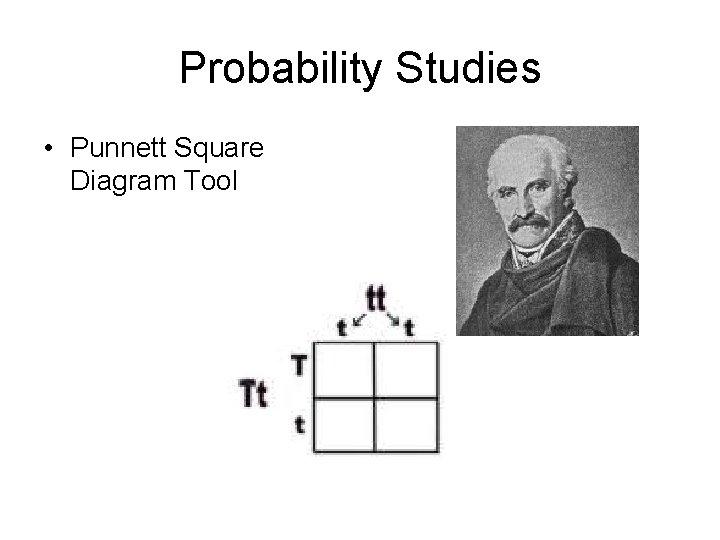 Probability Studies • Punnett Square Diagram Tool