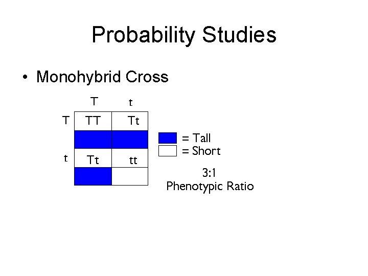 Probability Studies • Monohybrid Cross
