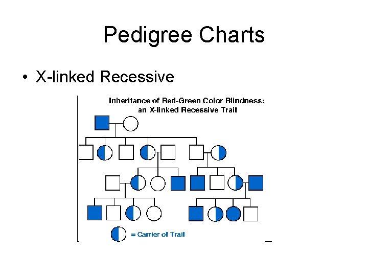 Pedigree Charts • X-linked Recessive